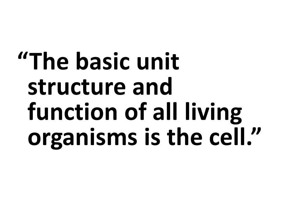 a description of the cell as the basic functioning unit of organisms The atom is the smallest and most fundamental unit of matter  in plants,  animals, and many other types of organisms, molecules come together in specific   to make tissues, which are groups of similar cells carrying out the same  function.