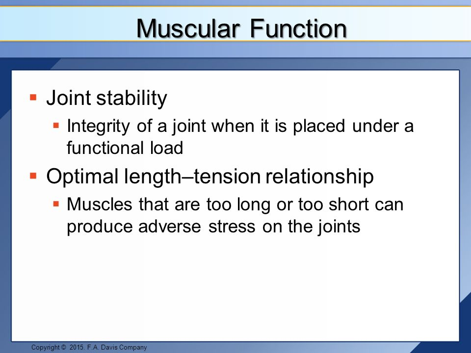 sarcomere length and tension relationship
