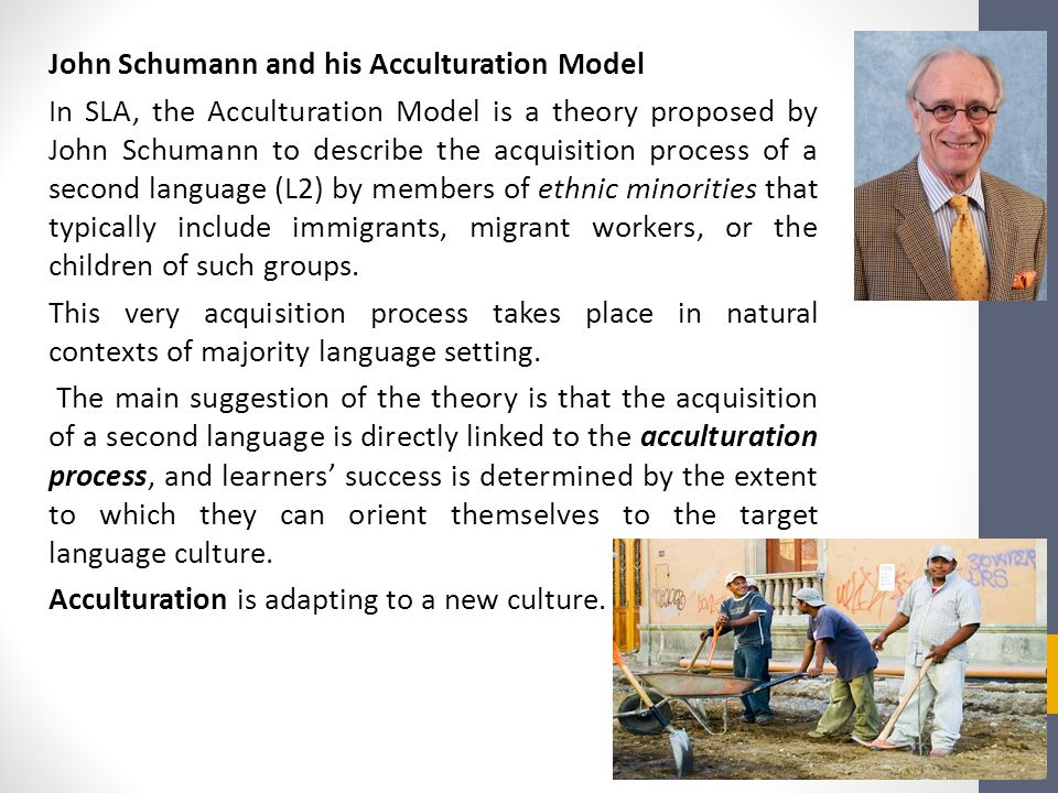A critical examination of acculturation theories