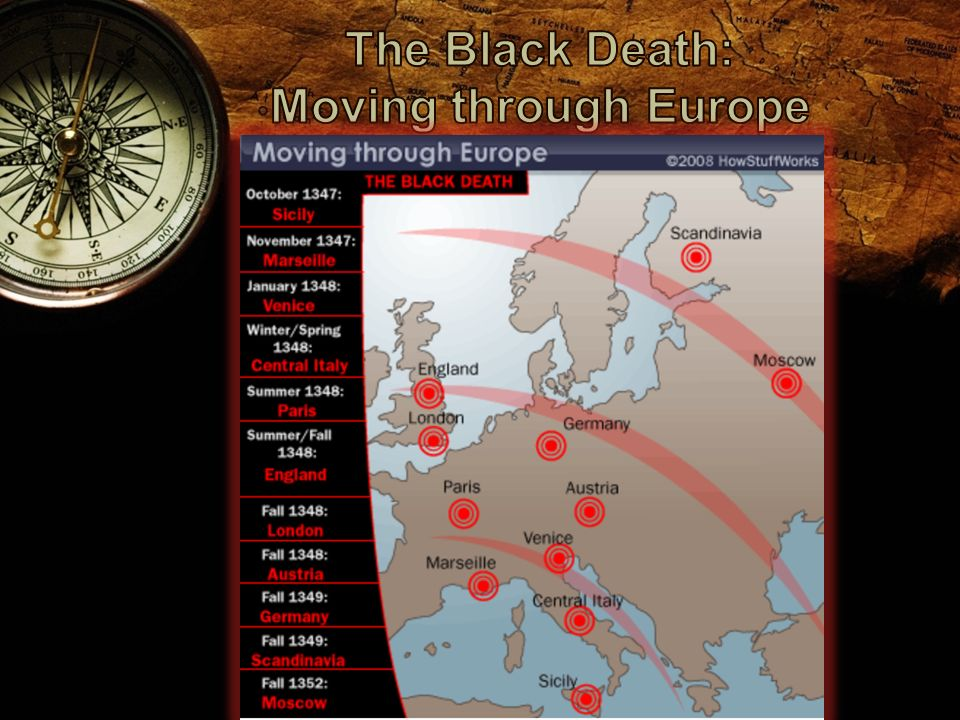 confusion and chaos surfaced in europe during the spread of the black death Estimates vary, but the black death may have killed one-half of europe's  population,  get all the facts on the black death and bubonic plague at  historycom  understand that the black death, now known as the plague, is  spread by a.