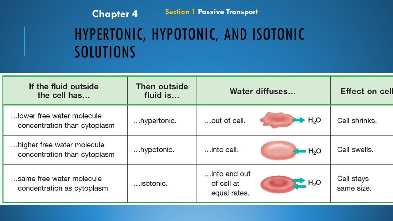 how do hypotonic hypertonic and isotonic Memorizing the definition of hypertonic, hypotonic, and isotonic solutions is not necessary when you understand the root words that make up these descriptive words.