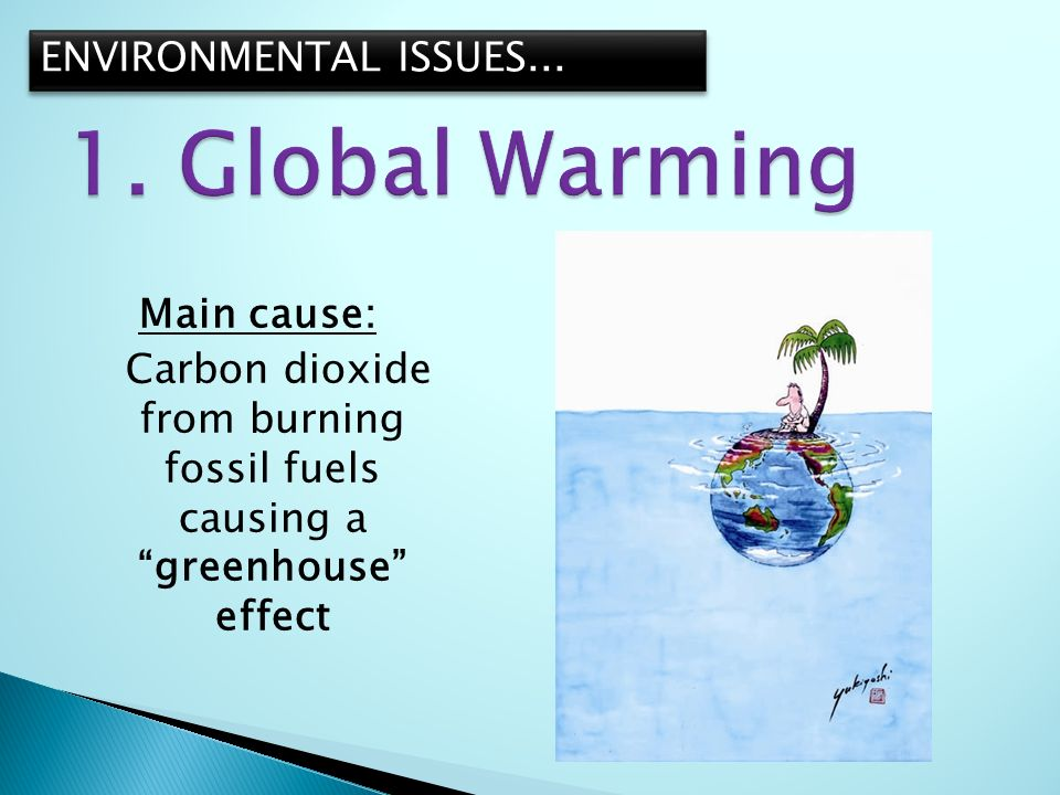 environmental issues are global issues