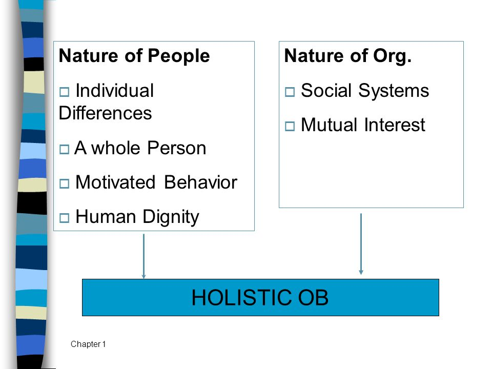 HOLISTIC OB Nature of People Individual Differences A whole Person