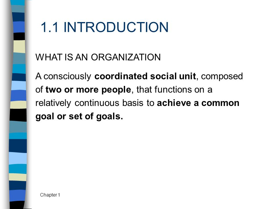 1.1 INTRODUCTION WHAT IS AN ORGANIZATION