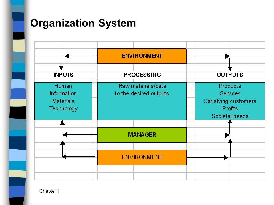 Organization System Chapter 1