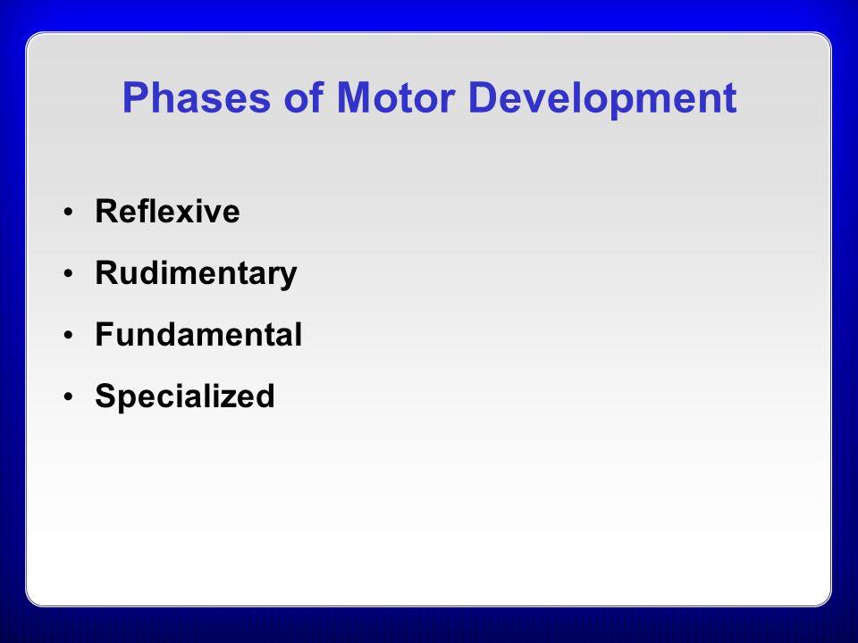 Chapter 19 motor development ppt video online download for 4 stages of motor development