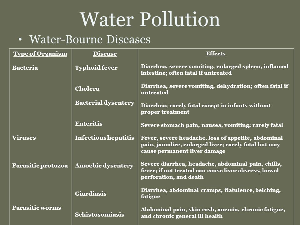 water bourne illnesses essay What is the main health risk after the cyclone the primary risk following the flooding of the delta region is the outbreak of diseases spread by contaminated water, such as diarrhoea, cholera and typhoid.