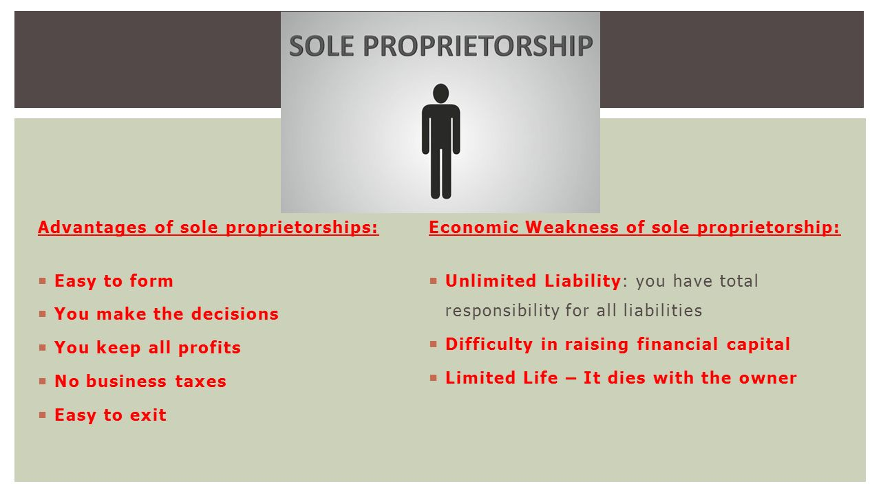 10 Advantages and Disadvantages of Sole Proprietorship
