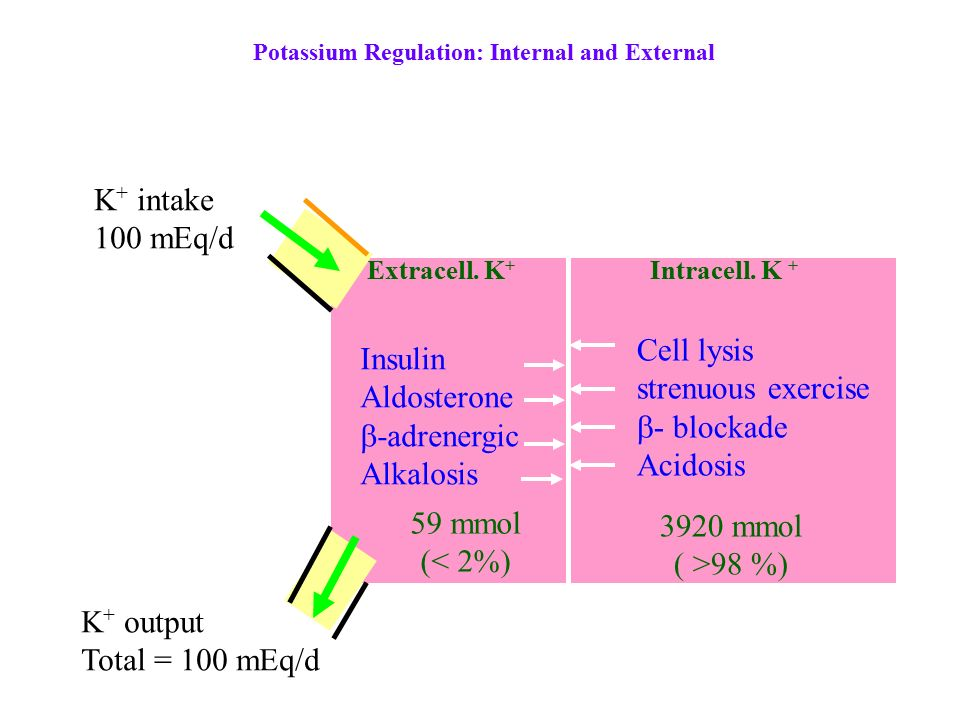 relationship between regular insulin and potassium