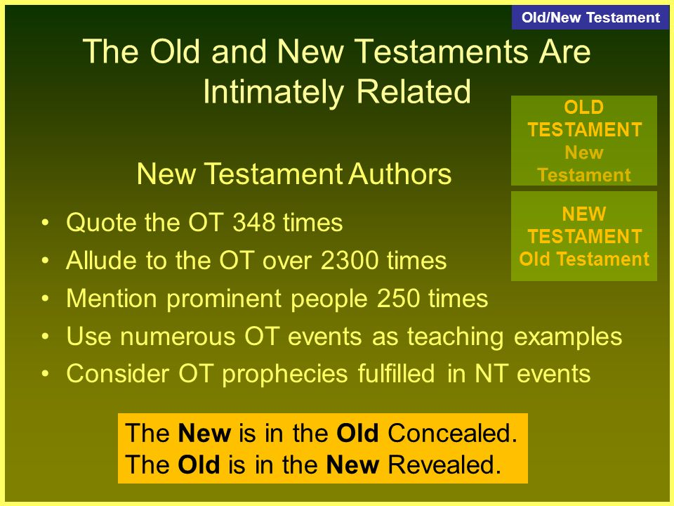 essay new old testament use