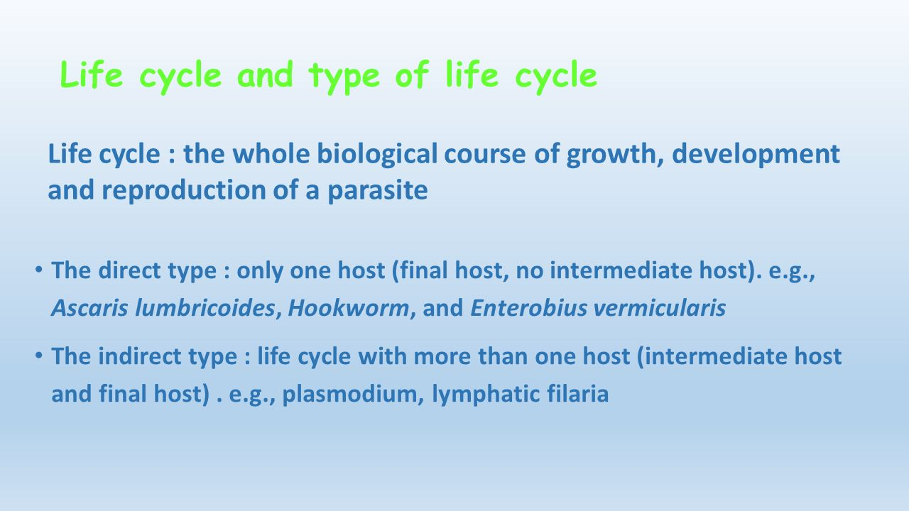 Product Life Cycle (PLC): Stages, Development & Process
