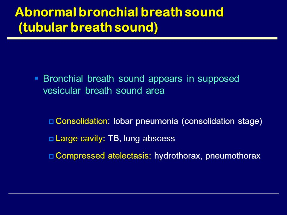 Lung Sounds: Crackles in the Lungs - iBuzzle