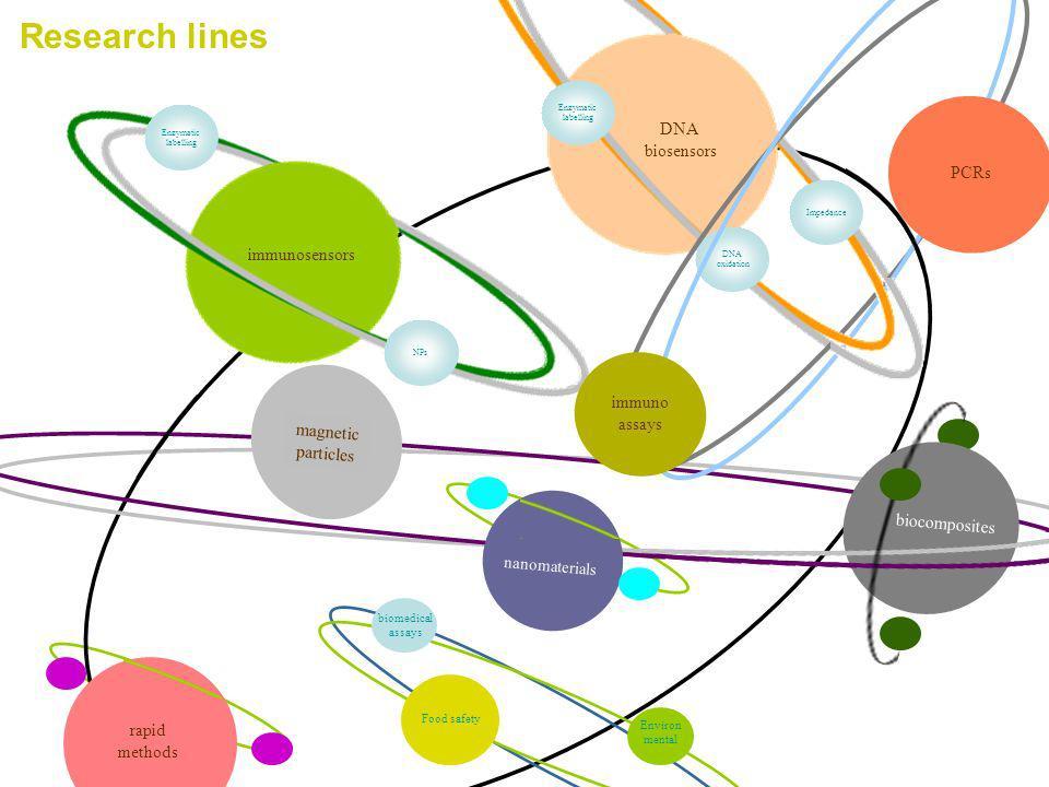 Research lines partículas magnéticas biocomposites DNA biosensors