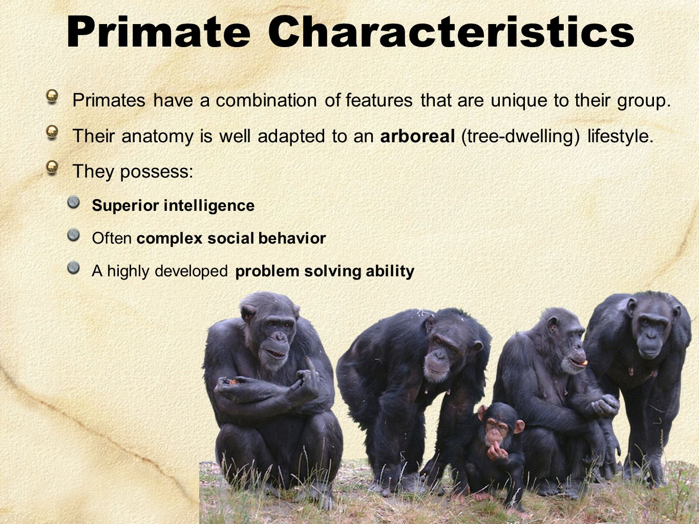 characteristics of chimpanzees Human language exhibits many unique features compared with the  communication systems of other animals the most obvious of these is its.