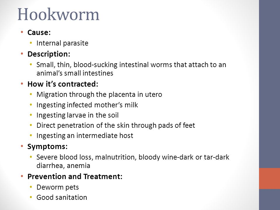 Hookworm Symptoms Images - Reverse Search