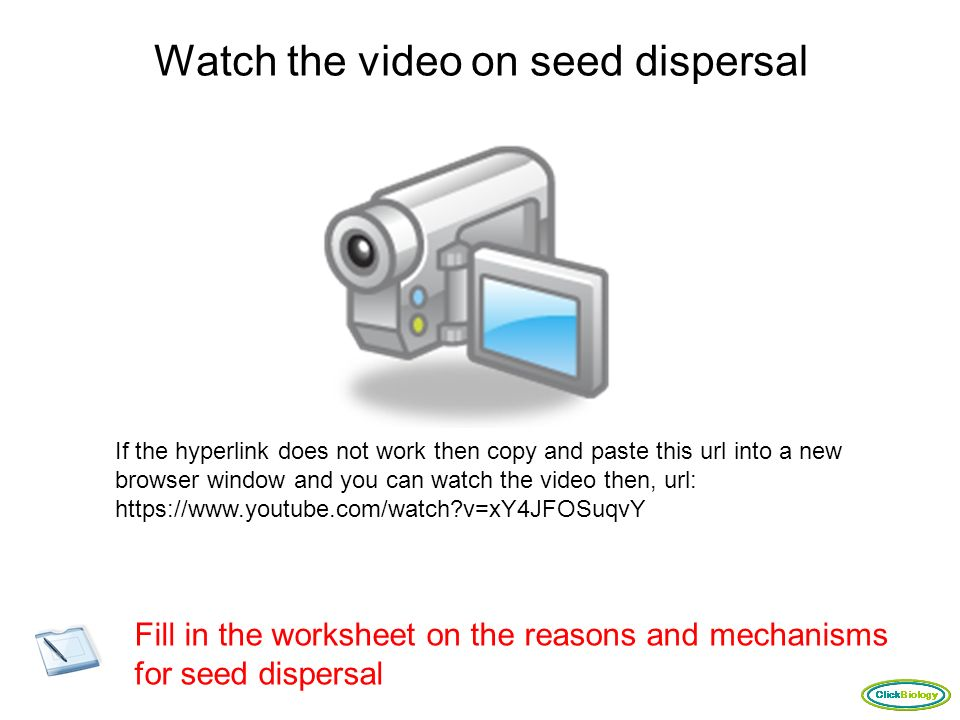 Plant Reproduction Click to Enter ppt video online download – Seed Dispersal Worksheet