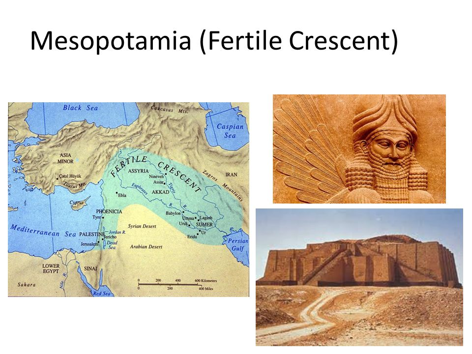 factors that contributed to the emergence of city states in lower mesopotamia Mesopotamia made simple: introduction of technology and art government and region reasons for decline works cited page reasons for decline the mesopotamian civilization declined the different city-states were fighting for control of each others lands and would wage all out.