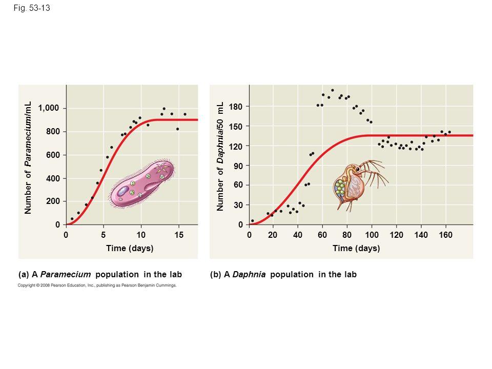Number of Paramecium/mL