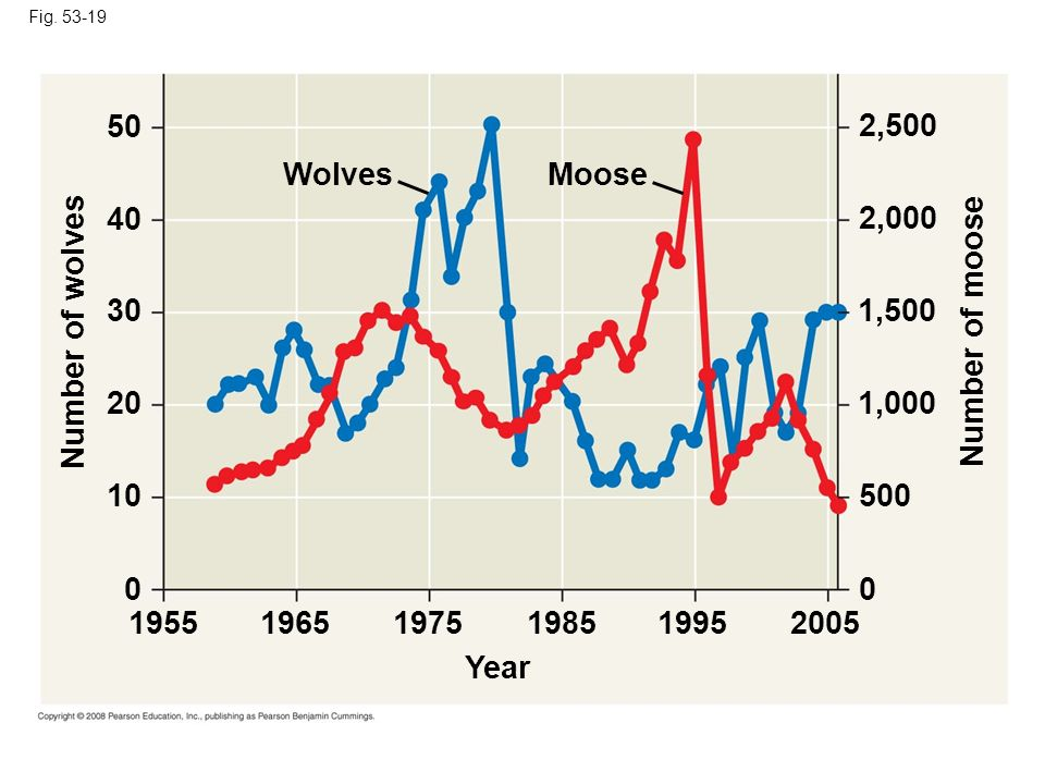 50 2,500 Wolves Moose 40 2,000 30 1,500 Number of wolves