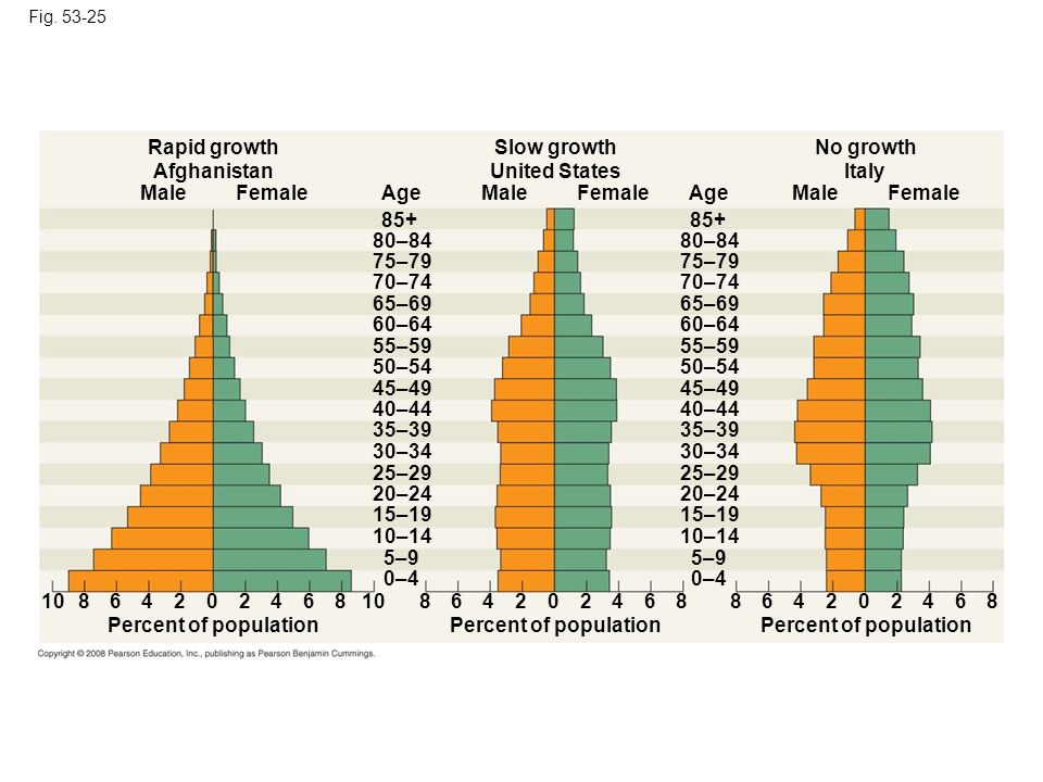 Rapid growth Slow growth No growth Afghanistan United States Italy
