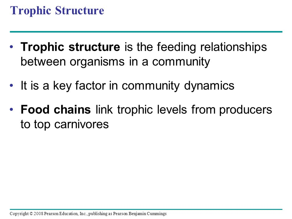 Trophic Structure Trophic structure is the feeding relationships between organisms in a community. It is a key factor in community dynamics.