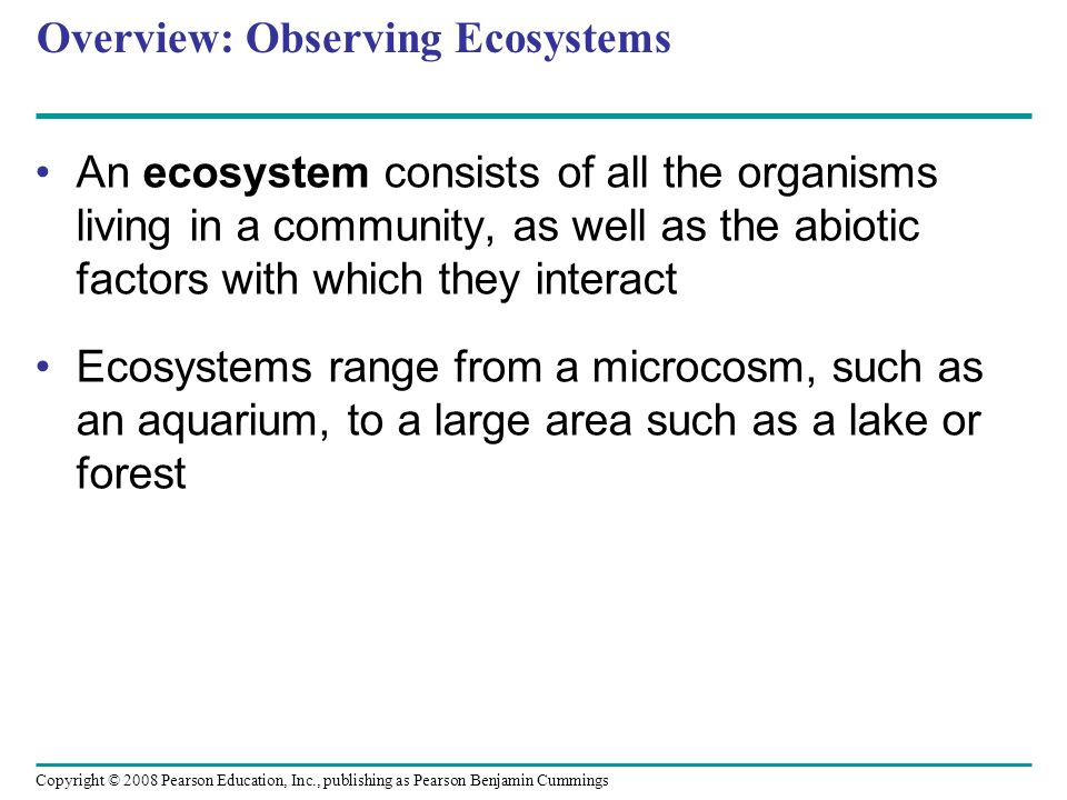 Overview: Observing Ecosystems