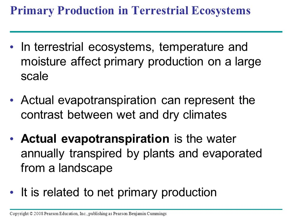Primary Production in Terrestrial Ecosystems