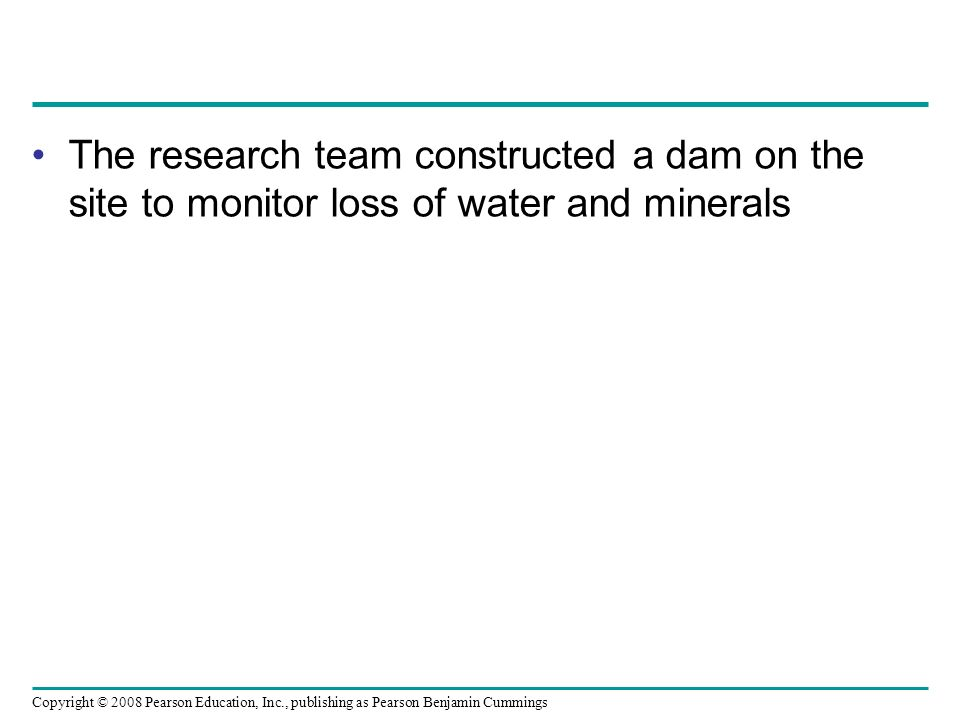 The research team constructed a dam on the site to monitor loss of water and minerals
