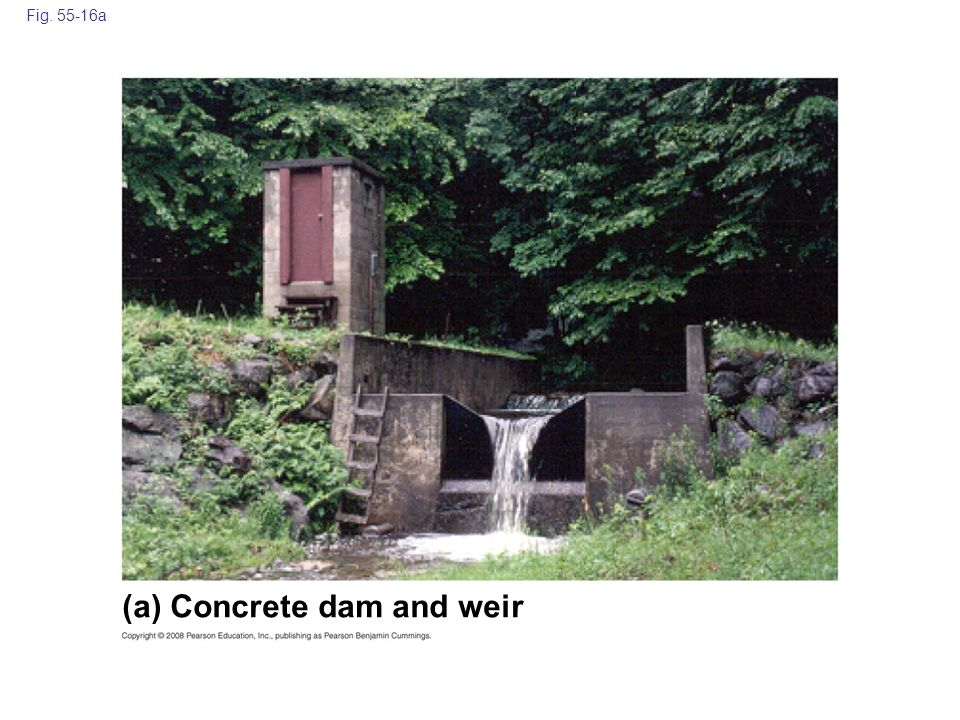 (a) Concrete dam and weir