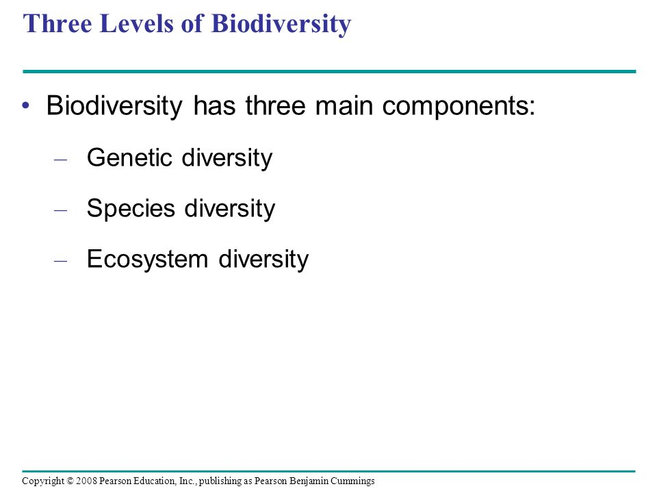 Three Levels of Biodiversity
