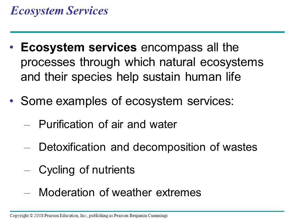 Some examples of ecosystem services: