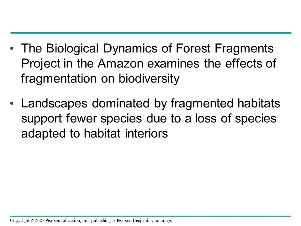 The Biological Dynamics of Forest Fragments Project in the Amazon examines the effects of fragmentation on biodiversity