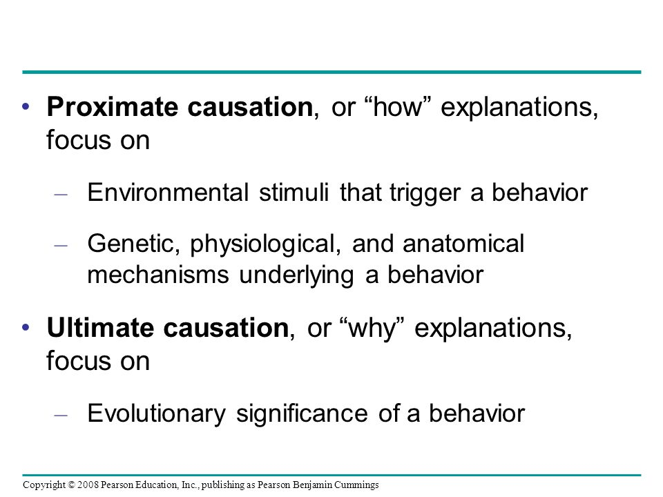 Proximate causation, or how explanations, focus on