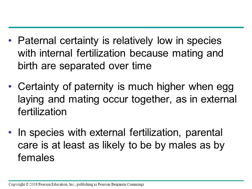 Paternal certainty is relatively low in species with internal fertilization because mating and birth are separated over time