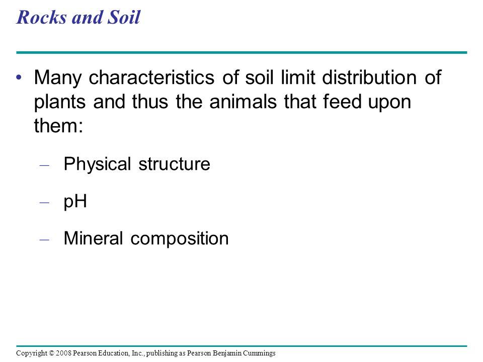 Rocks and Soil Many characteristics of soil limit distribution of plants and thus the animals that feed upon them:
