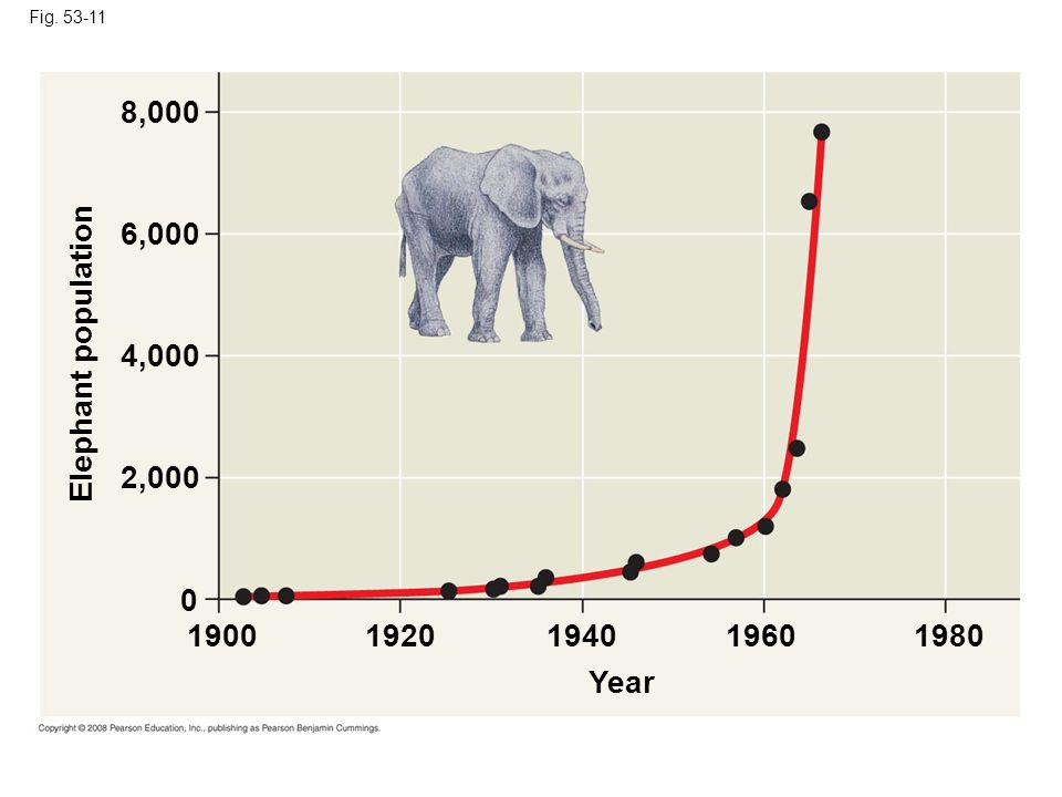 Fig. 53-11 8,000. 6,000. Elephant population. 4,000. 2,000.