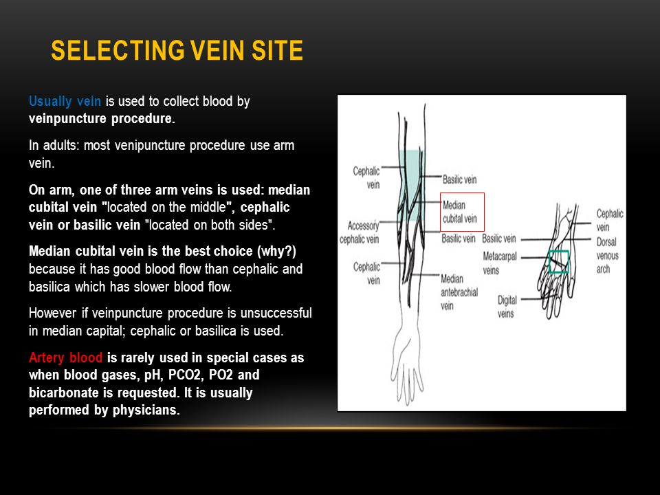 venipuncture blood and vein Instruction for blood specimen collection for geisinger medical laboratories blood specimen collection and processing the venipuncture procedure is complex.