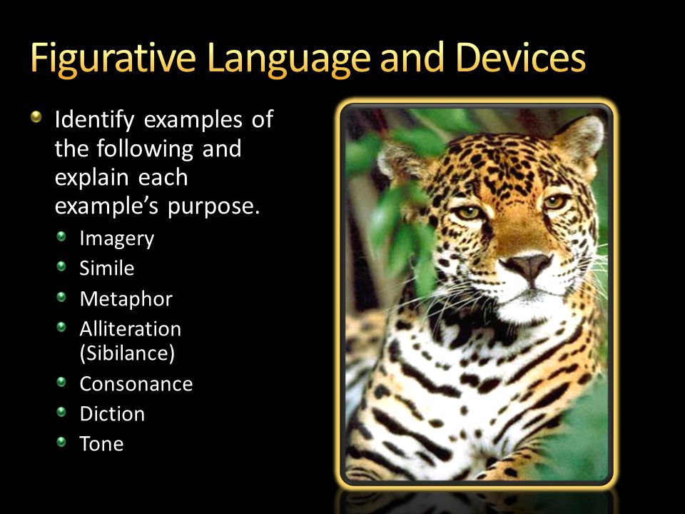 The Jaguar By Ted Hughes 4 28 2017 1 56 Am Ppt Video