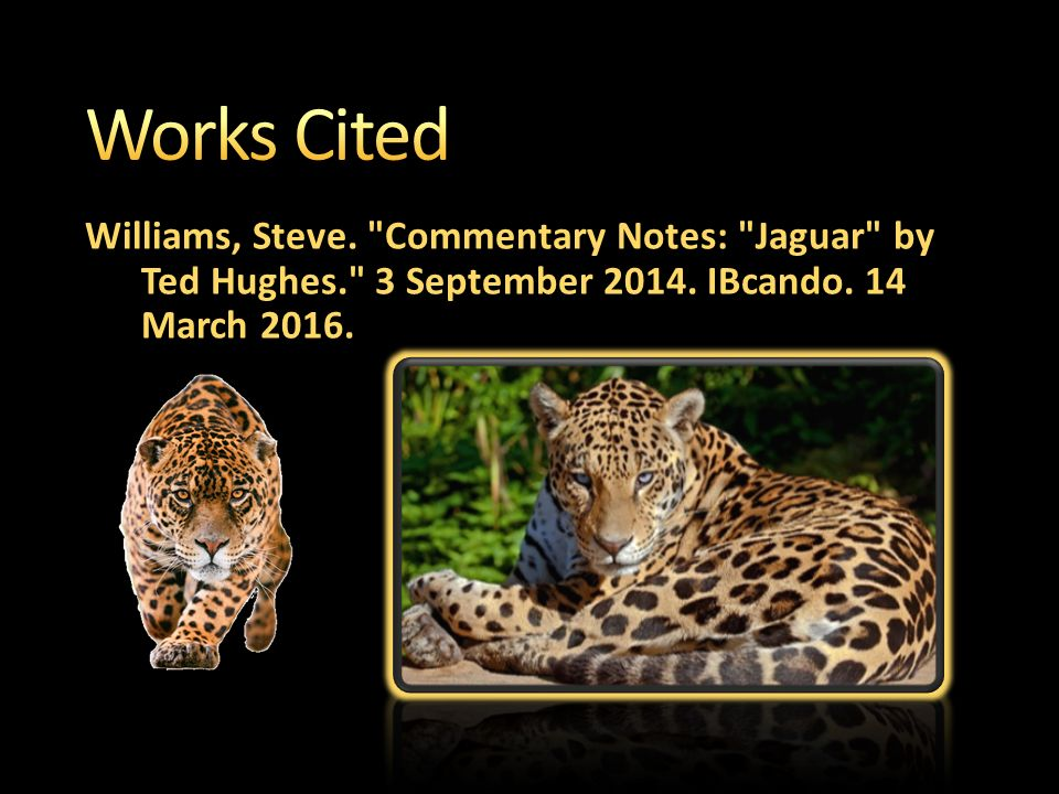 the jaguar by ted hughes commentary The jaguar, composed by the zoo laureate ted hughes, is a poem on the background of a zoo and the poem is well-know for the imagery that the poet uses to portray the.