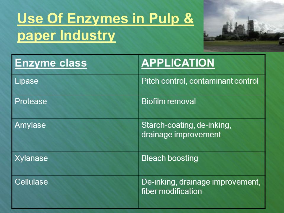 enzymes in industry essay Response to the question this essay outlines the uses of enzymes in industry well, however this is no exploration of the disadvantages or costs.