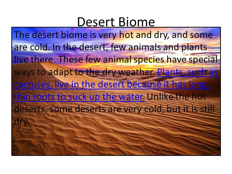 Plants that live in the desert biome