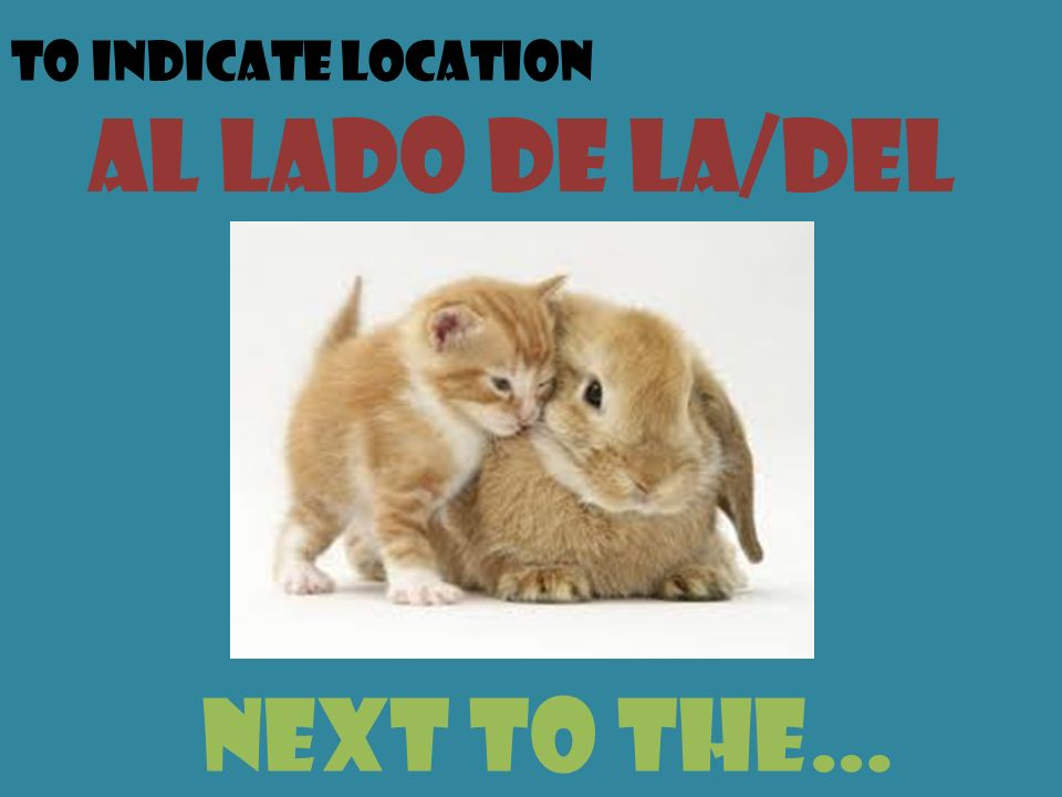 To indicate location al lado de la/del next to the…