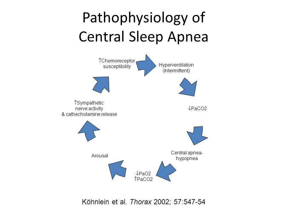 Pathophysiology of Central Sleep Apnea