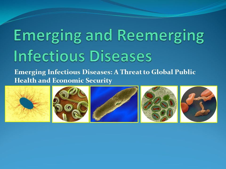 emerging and reemerging zoonoses in india Emerging and re emerging zoonoses slideshare uses cookies to improve functionality and performance, and to provide you with relevant advertising if you continue browsing the site, you agree to the use of cookies on this website.