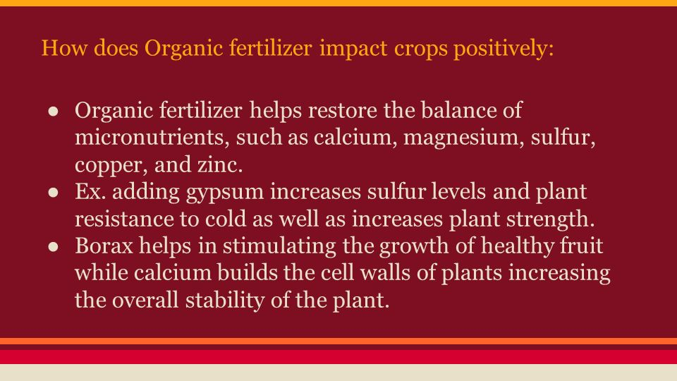 how does organic fertilizer affect the You should do some of your own experiments to investigate the effect the  as  part of your investigation – you should include some organic/natural fertilisers in .