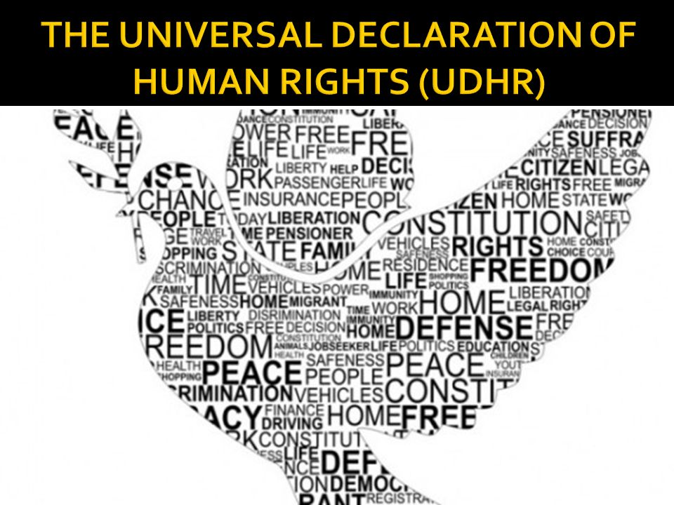 THE UNIVERSAL DECLARATION OF HUMAN RIGHTS (UDHR)