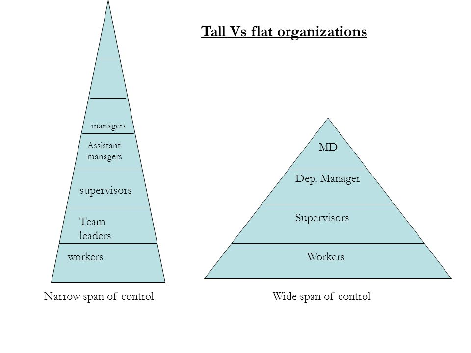 tall and flat organisational structure business essay Tesco organisational structure essay  chroncom/tall-vs-flat-organizational-structure-283  structures helps both business to successfully fulfil.