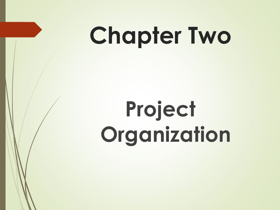 Chapter Two Project Organization