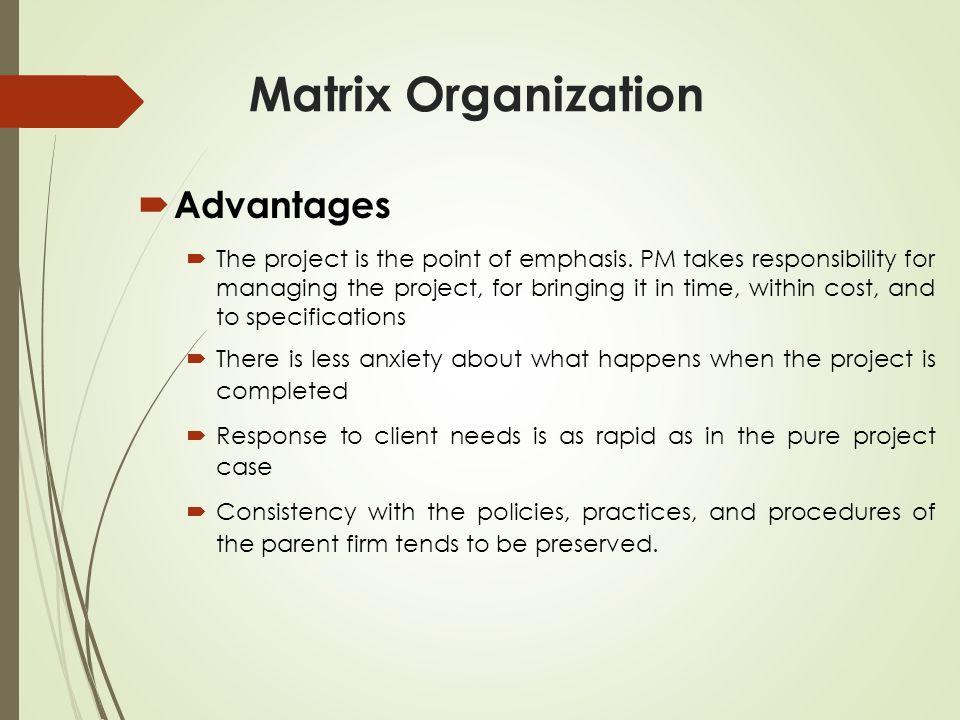 Matrix Organization Advantages