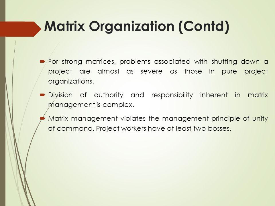 Matrix Organization (Contd)